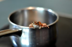 Boiling Frog Syndrome